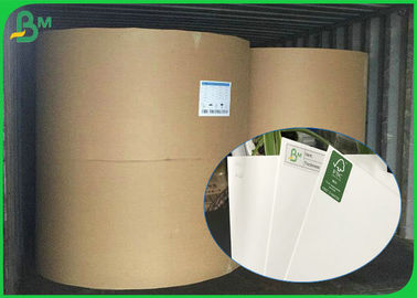 Durable C1S FBB Board 250gsm 270gsm 300gsm 350gsm One Sided Glossy Paper